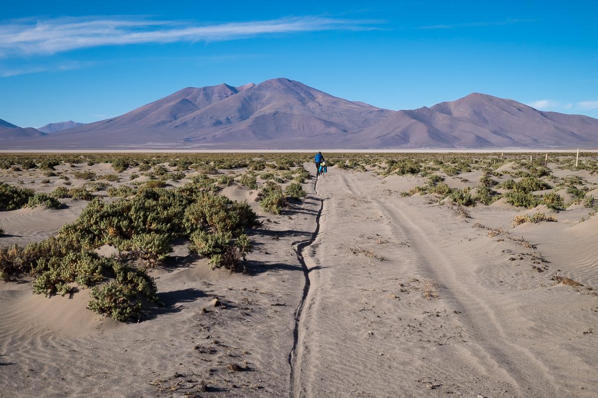 altiplano-4118
