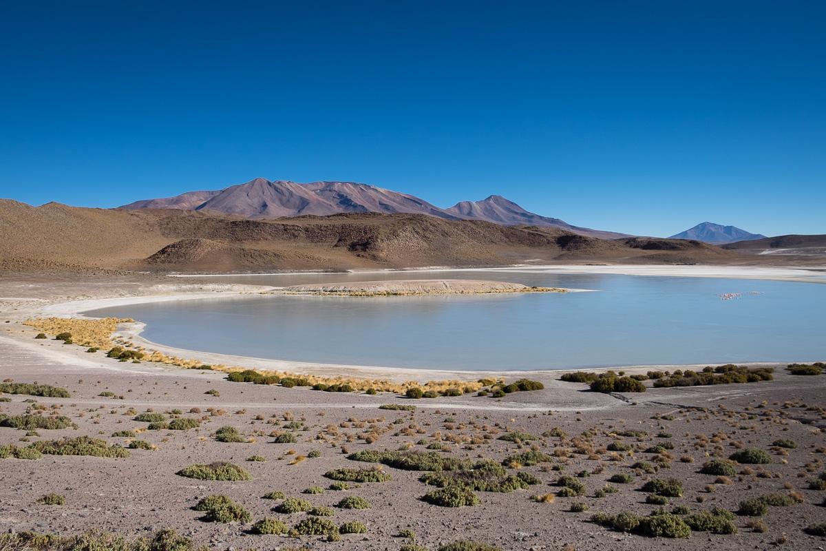 altiplano-4167